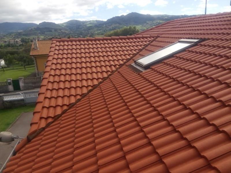 Lavado con maquina de agua a presion todo el tejado de la casa y pintgado del mismo con pintura elastica anti goteras